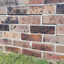 Cracked retaining wall