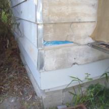 Damaged cladding